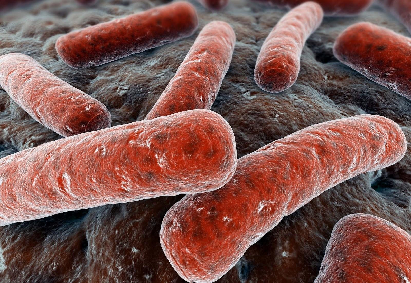 В Павлодарской области стали меньше болеть туберкулезом