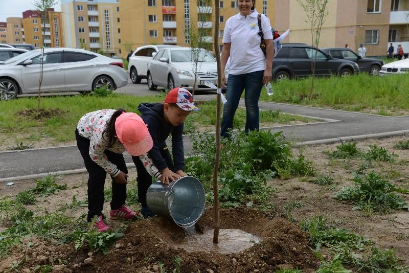 Жителей Алматы призывают высаживать деревья в своих дворах