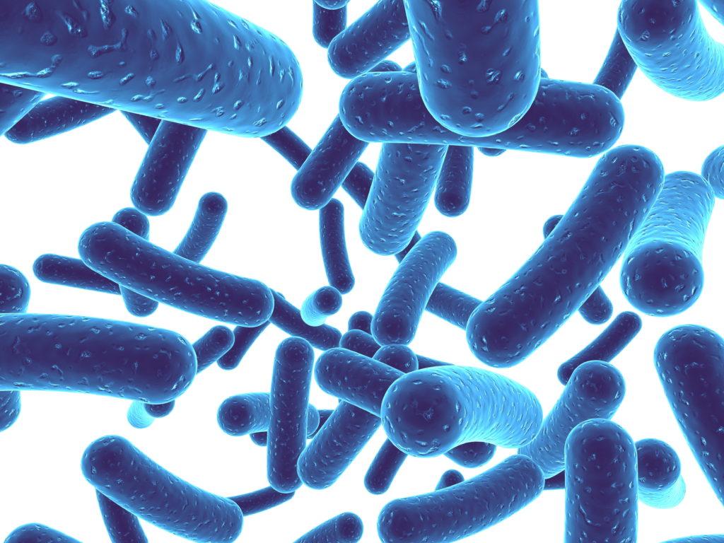 Не выбрасывайте деньги на пробиотики: чаще всего они бесполезны