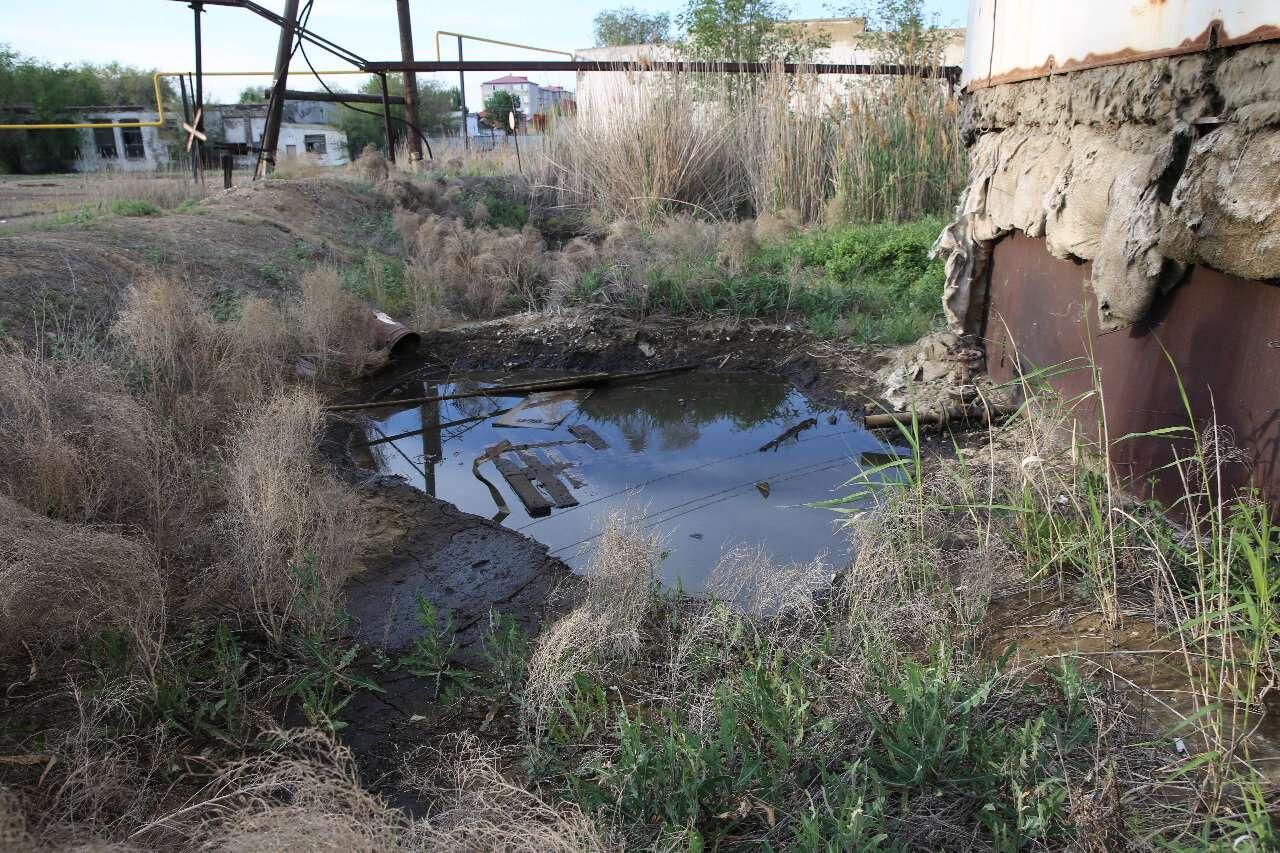 В Атырауской области построят новый канал для нереста рыб и почистят старые