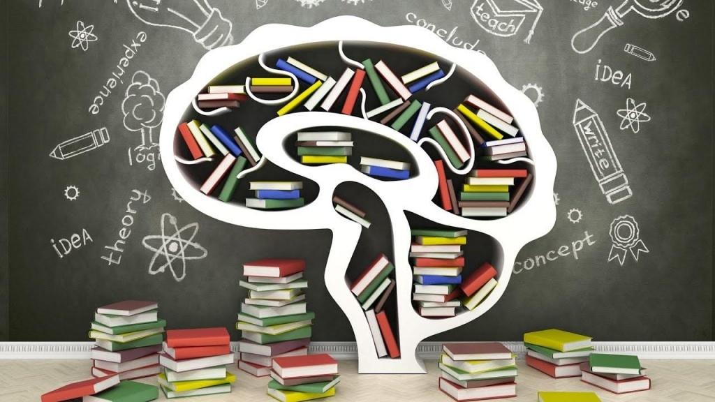 Тест: Что вы знаете о способностях мозга человека?